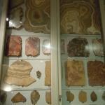 Foto di Museo Opificio delle Pietre Dure