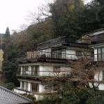 Photo de Hotel Senkei