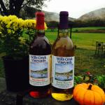 Wills Creek Vineyards