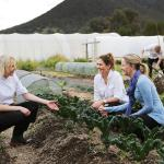 Guests and chef on Kitchen Garden Tour
