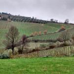 Bilde fra Villa del Sole