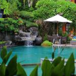 Pool - Adi Dharma Cottages