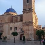 Ibis Alicante Elche Foto