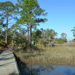 Boardwalk on Hunting Island