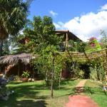 The Moroccan Villa Garden View Treasure Beach Jamaica