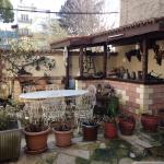 Photo of Tuncay Pension