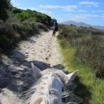 Sleepy Hollow Horse Riding Foto