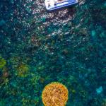 Sub Sea Explorer circling 'Ayers Rock', a 1000 year old porite coral in Coral Bay