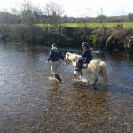 Foto de Eclipse Ireland Holiday Homes, Equestrian & Activity Centre