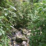 Foto de The Mine Trail (La Mina)
