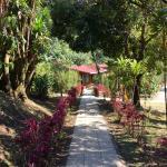 El Bosque Trails & Eco-Lodge Photo