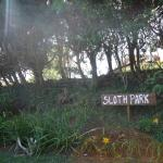 """The """"Sloth Park"""" is part of the grounds of Hotel Don Taco. But sloths can't read English."""