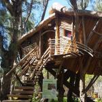 La Cabane Perchée