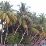 Фотография Dhebanveli