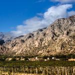 Viñas de Cafayate