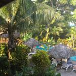 View from second floor - pool, vegetation and ocean