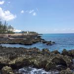 Photo de The Cracked Conch by the Sea