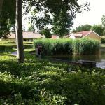 The idyllic town of Viborg