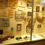 Um pouco dos espécimes do Museu