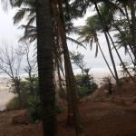 Landscape - MTDC Beach Resort Ganapatipule Photo