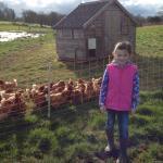 Rock Farm Slane