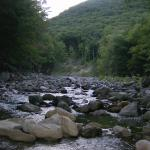 The Cold River from our campsite at the Mohawk Trail State Forest