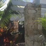 Photo of Villa Belia