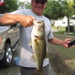 a 4+ lb bass from the lake