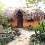 Casitas Kinsol Guest House in Puerto Morelos - Room #8 is an authentic Mayan Hut built in the la
