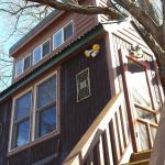 View of White Oak treehouse from the lower of the two decks.