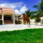 Photo of Hotel La Saladilla Beach Club