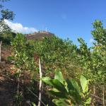 Photo de Mt Tapyas