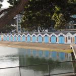 Foto de Oriental Bay