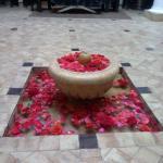 Photo of Riad Terra Bahia