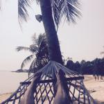 Photo of Beck's Resort