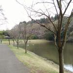 Showa no Mori Park Foto