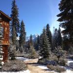 Stillman Lodge