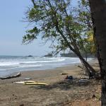 写真Dominicalito Beach枚