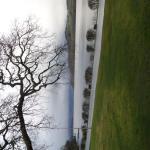 Photo de Cameron House Lodges