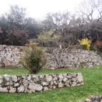 Photo of Agriturismo Il Caggio