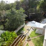 Roof Garden and back yard