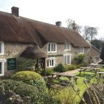 Thatched Cottage Front