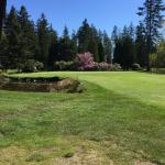 Very pretty course with lots of cherry blossom & arbutus trees.