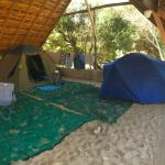 Spacious camping and wide open beaches