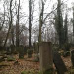 Photo of Jewish Cemetery