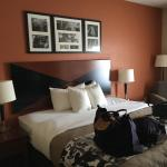 Foto de Sleep Inn & Suites East Chase