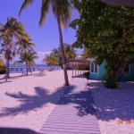 2015-04-April SB Little Cayman Island (184)_large.jpg