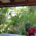 Blick von der kleinen Terrasse des Bungalows auf die umgebende Gartenanlage