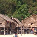 Andaman Discoveries
