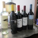 Foto de Taninas Wine Tastings